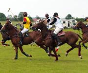 Polosport in Thann