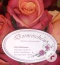 52_Blumen_Dornröschen