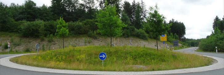 Blühflächen in Holzkirchen_6