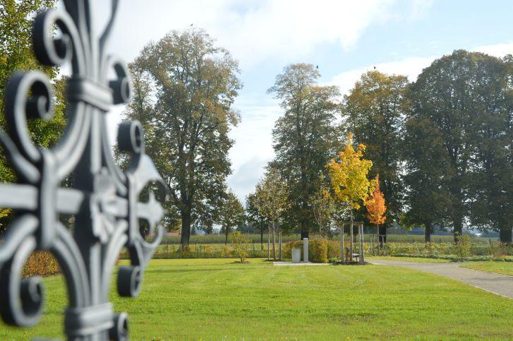 Neuer_Friedhof_Grabflaechen